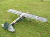 storch_001
