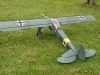 storch_003