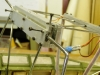 storch_027